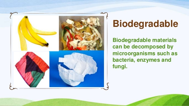 biodegradable material info